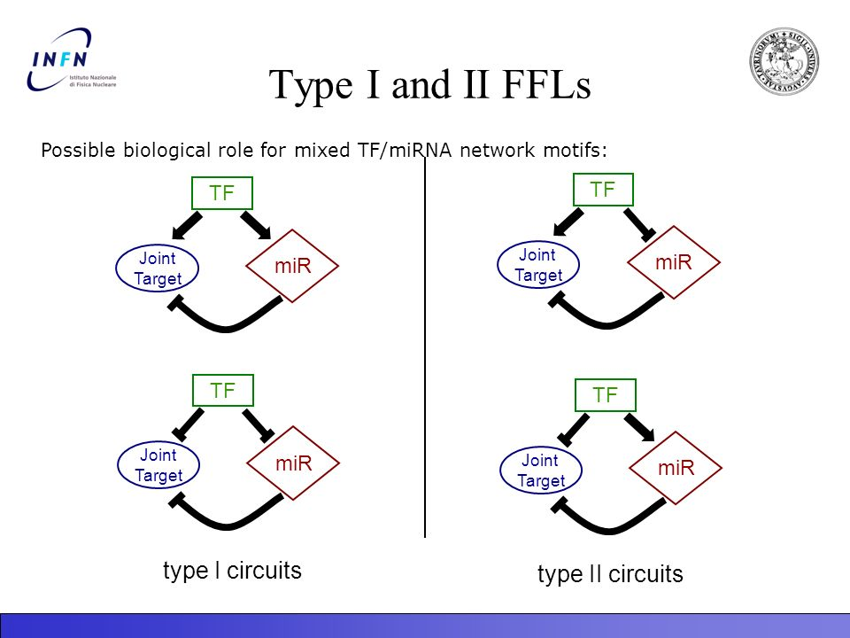 Type I and II FFLs TF Joint Target miR TF Joint Target miR TF Joint Target miR TF Joint Target miR type I circuits type II circuits Possible biologica