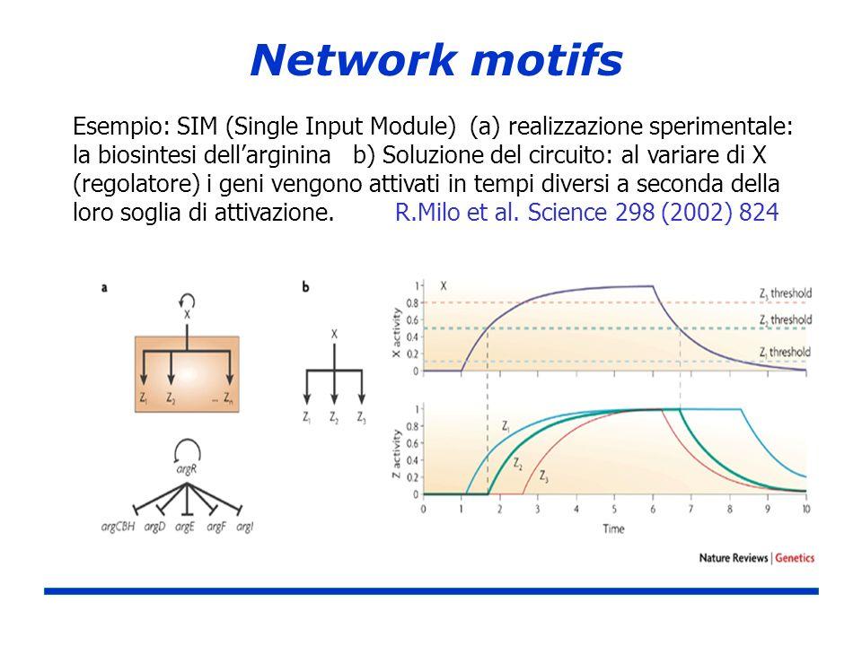 Network motifs Esempio: SIM (Single Input Module) (a) realizzazione sperimentale: la biosintesi dellarginina b) Soluzione del circuito: al variare di