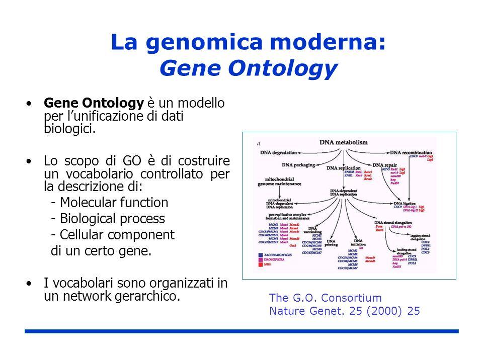La genomica moderna: Gene Ontology Gene Ontology è un modello per lunificazione di dati biologici. Lo scopo di GO è di costruire un vocabolario contro