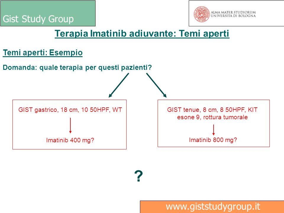 Gist Study Group Medici Ricerca www.giststudygroup.it Terapia Imatinib adiuvante: Temi aperti Temi aperti: Esempio Domanda: quale terapia per questi p