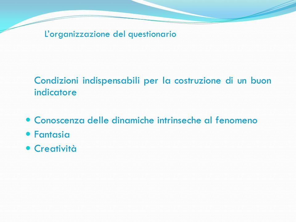 Lorganizzazione del questionario Condizioni indispensabili per la costruzione di un buon indicatore Conoscenza delle dinamiche intrinseche al fenomeno