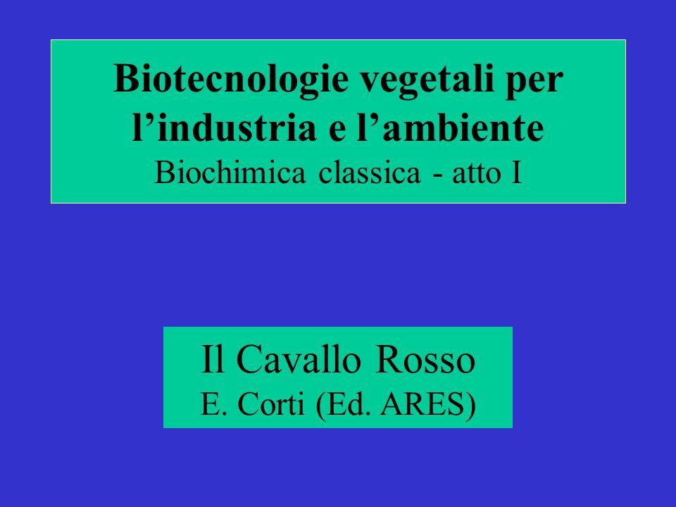 Biotecnologie vegetali per lindustria e lambiente Biochimica classica - atto I Il Cavallo Rosso E.