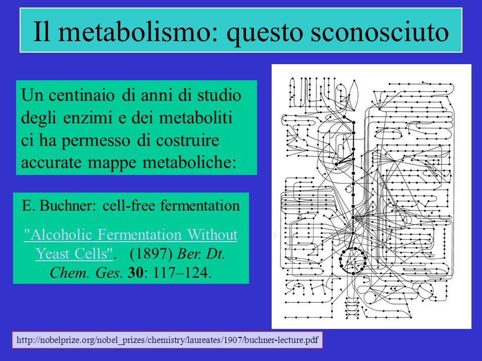 Il metabolismo: questo sconosciuto Un centinaio di anni di studio degli enzimi e dei metaboliti ci ha permesso di costruire accurate mappe metaboliche: E.
