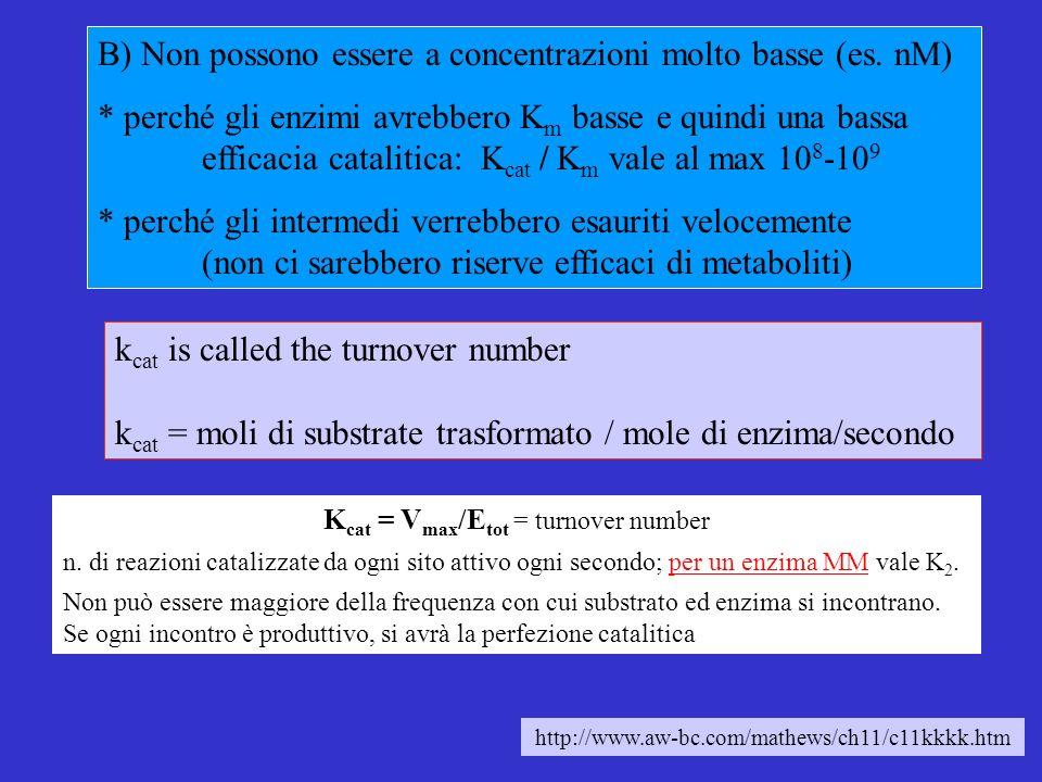 B) Non possono essere a concentrazioni molto basse (es.