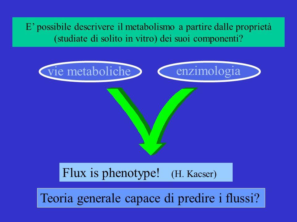 Teoria generale capace di predire i flussi.vie metaboliche enzimologia Flux is phenotype.