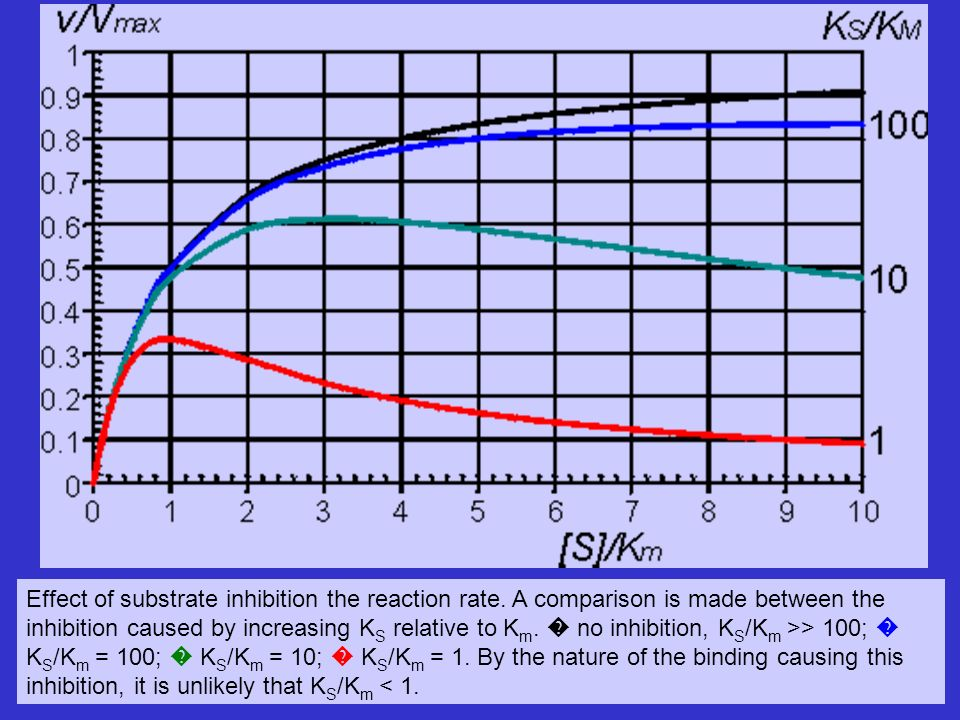 Effect of substrate inhibition the reaction rate. A comparison is made between the inhibition caused by increasing K S relative to K m. no inhibition,