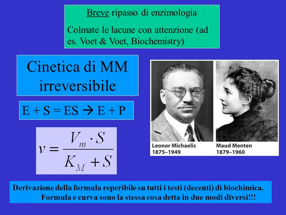 Cinetica di MM irreversibile E + S = ES E + P Derivazione della formula reperibile su tutti i testi (decenti) di biochimica.