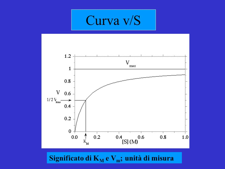 La relazione di Haldane Allequilibrio v = 0 per cui il numeratore sarà = 0 = K eq