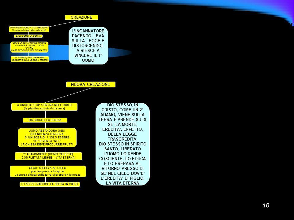 10 CREAZIONE DIO CREÒ LUOMO A SUA IMMAGINE (Il seme sviluppa radici nella terra) DALLUOMO, LA DONNA UOMO LASCIA PADRE E MADRE SI UNISCE A SPOSA, 1 SOL