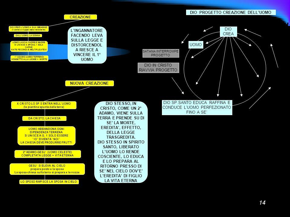 14 CREAZIONE DIO CREÒ LUOMO A SUA IMMAGINE (Il seme sviluppa radici nella terra) DALLUOMO, LA DONNA UOMO LASCIA PADRE E MADRE SI UNISCE A SPOSA, 1 SOL