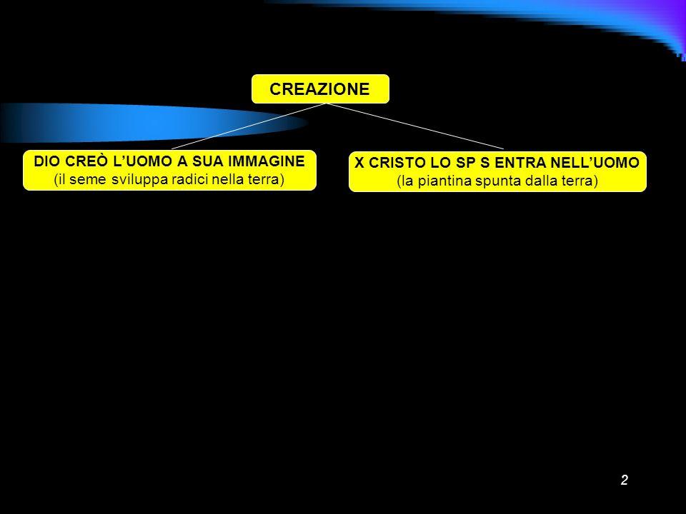 2 CREAZIONE DIO CREÒ LUOMO A SUA IMMAGINE (il seme sviluppa radici nella terra) X CRISTO LO SP S ENTRA NELLUOMO (la piantina spunta dalla terra)