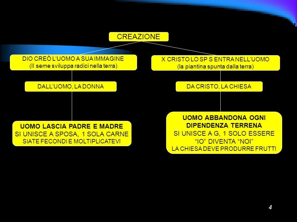 4 CREAZIONE DIO CREÒ LUOMO A SUA IMMAGINE (Il seme sviluppa radici nella terra) X CRISTO LO SP S ENTRA NELLUOMO (la piantina spunta dalla terra) DALLU
