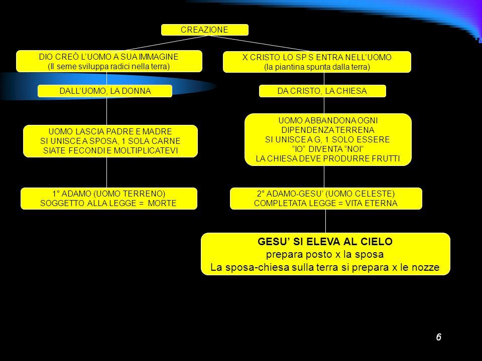 6 CREAZIONE DIO CREÒ LUOMO A SUA IMMAGINE (Il seme sviluppa radici nella terra) X CRISTO LO SP S ENTRA NELLUOMO (la piantina spunta dalla terra) DALLU