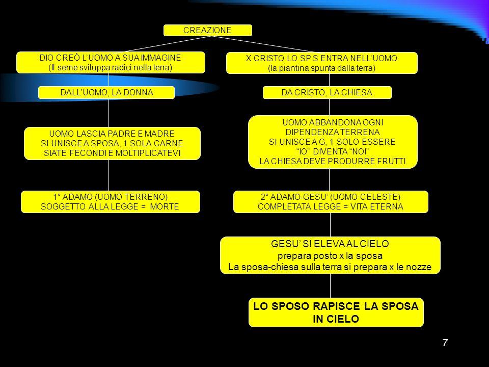 7 CREAZIONE DIO CREÒ LUOMO A SUA IMMAGINE (Il seme sviluppa radici nella terra) X CRISTO LO SP S ENTRA NELLUOMO (la piantina spunta dalla terra) DALLU