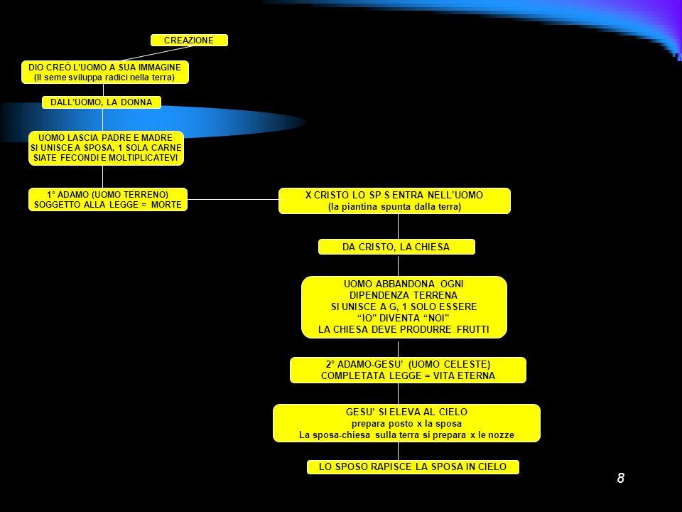 8 CREAZIONE DIO CREÒ LUOMO A SUA IMMAGINE (Il seme sviluppa radici nella terra) DALLUOMO, LA DONNA UOMO LASCIA PADRE E MADRE SI UNISCE A SPOSA, 1 SOLA