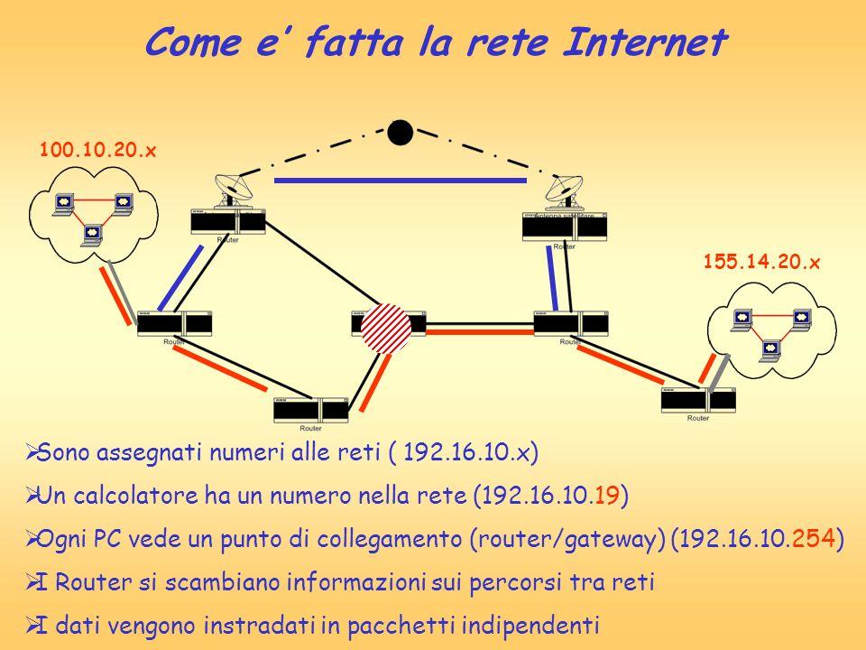 100.10.20.x 155.14.20.x Sono assegnati numeri alle reti ( 192.16.10.x) Un calcolatore ha un numero nella rete (192.16.10.19) Ogni PC vede un punto di