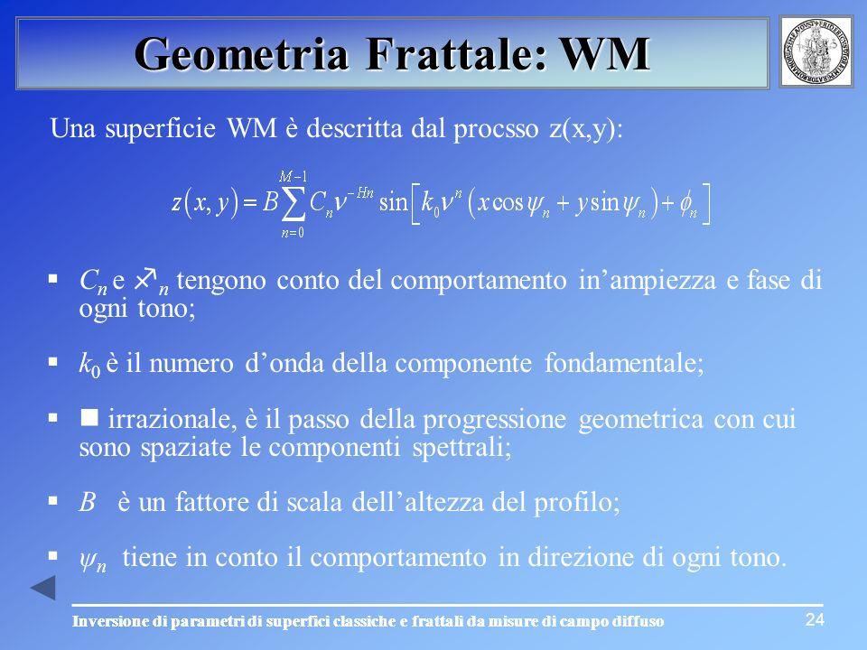 24 Geometria Frattale: WM Una superficie WM è descritta dal procsso z(x,y): C n e n tengono conto del comportamento inampiezza e fase di ogni tono; k