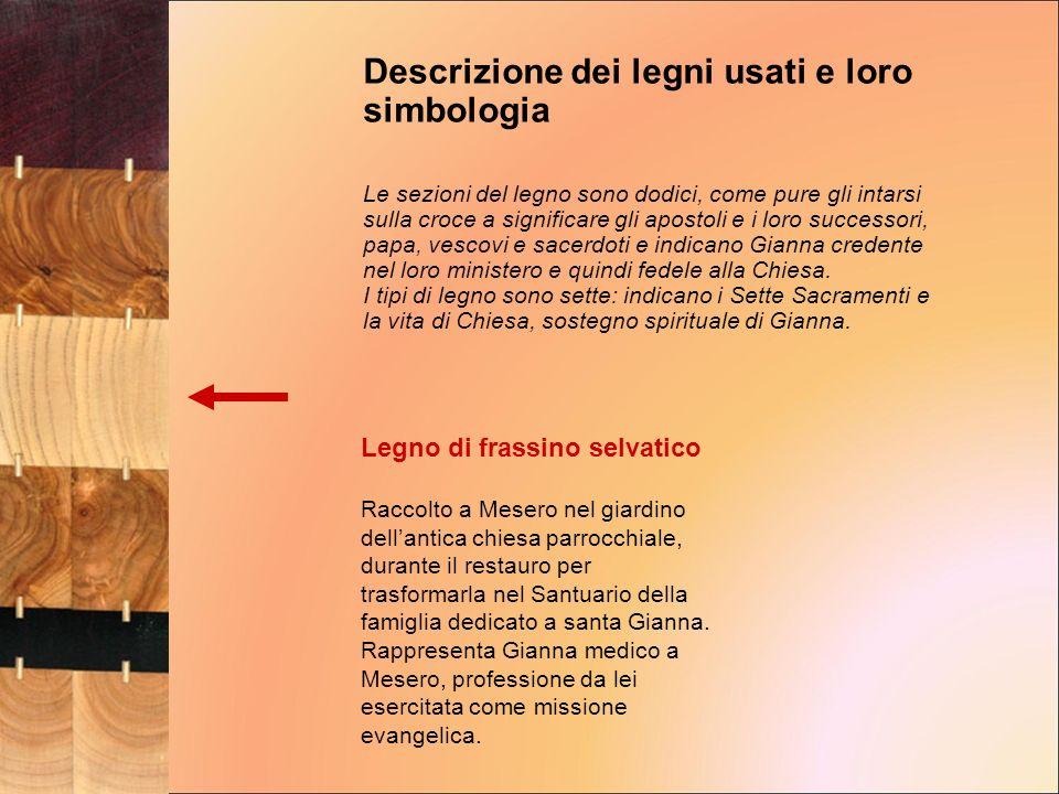 Legno di frassino selvatico Raccolto a Mesero nel giardino dellantica chiesa parrocchiale, durante il restauro per trasformarla nel Santuario della fa