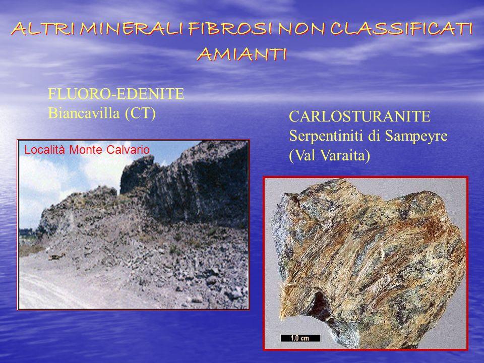 Fluoro-edenite Tremolite A(Na,K)B(Na,Ca,Mg, Mn) 2 C(Mg,Fe 2+,Fe 3+ Ti 4+ ) 5 T(Si,Al)O 22 O 3 (F,Cl) 2