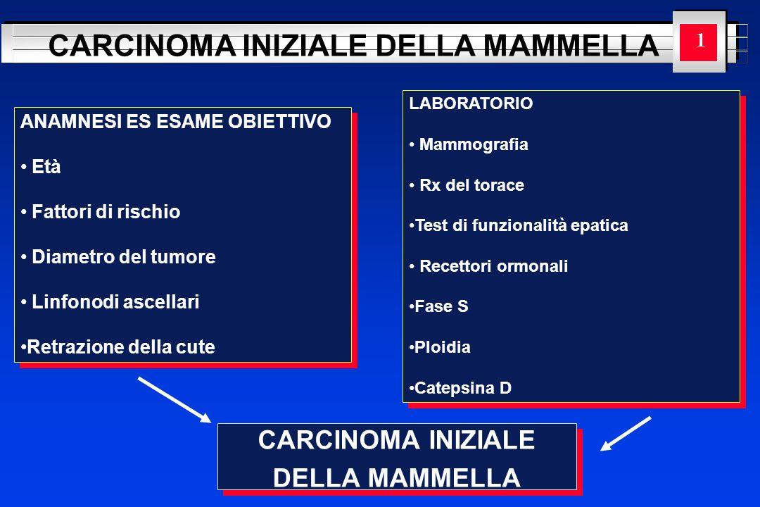 YOUR LOGO HERE CARCINOMA INIZIALE DELLA MAMMELLA CARCINOMA INIZIALE DELLA MAMMELLA CARCINOMA INIZIALE DELLA MAMMELLA 1 ANAMNESI ES ESAME OBIETTIVO Età