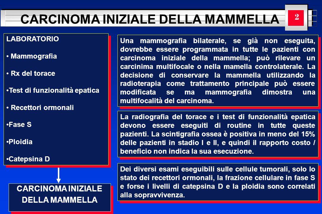 YOUR LOGO HERE CARCINOMA INIZIALE DELLA MAMMELLA CARCINOMA INIZIALE DELLA MAMMELLA CARCINOMA INIZIALE DELLA MAMMELLA 2 LABORATORIO Mammografia Rx del