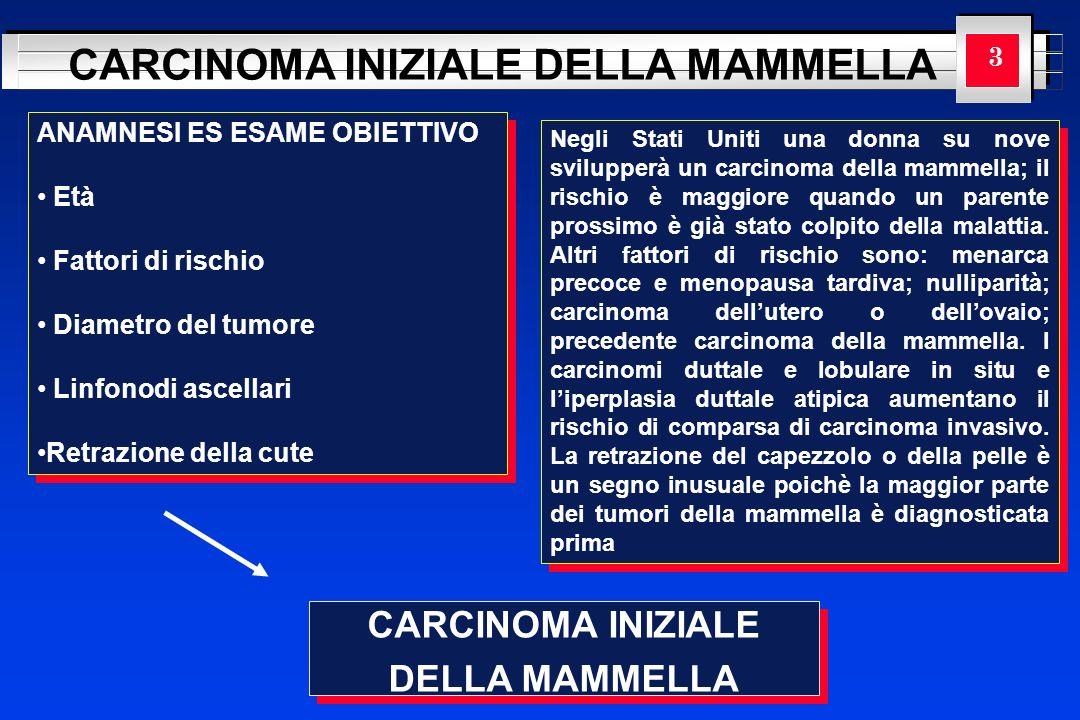 YOUR LOGO HERE CARCINOMA INIZIALE DELLA MAMMELLA CARCINOMA INIZIALE DELLA MAMMELLA CARCINOMA INIZIALE DELLA MAMMELLA 3 ANAMNESI ES ESAME OBIETTIVO Età