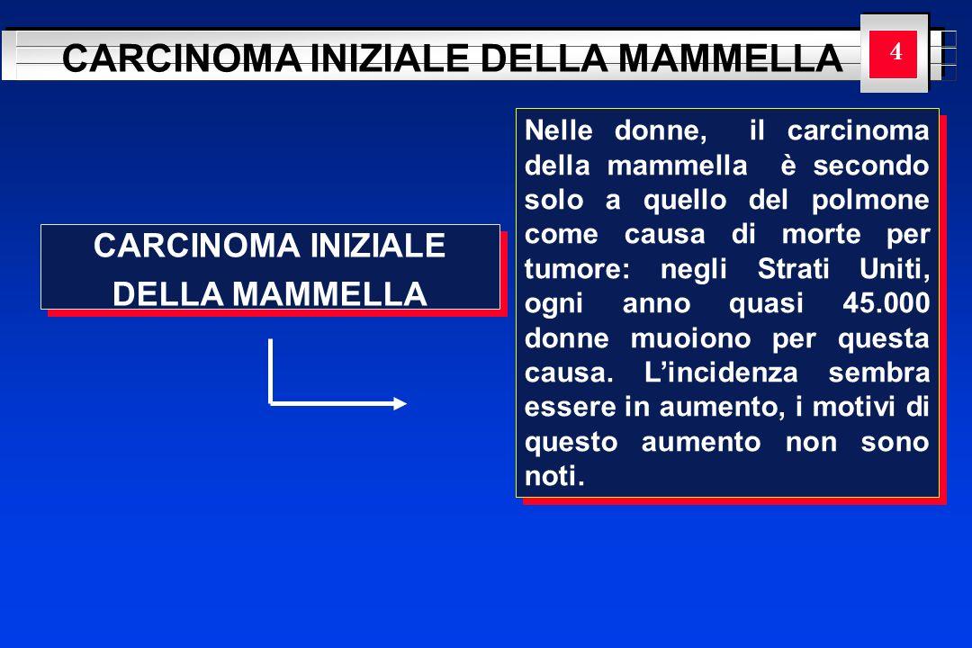 YOUR LOGO HERE CARCINOMA INIZIALE DELLA MAMMELLA CARCINOMA INIZIALE DELLA MAMMELLA CARCINOMA INIZIALE DELLA MAMMELLA 4 Nelle donne, il carcinoma della
