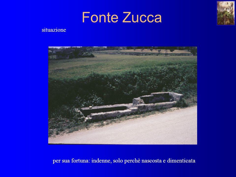 Fonte Zucca situazione per sua fortuna: indenne, solo perchè nascosta e dimenticata