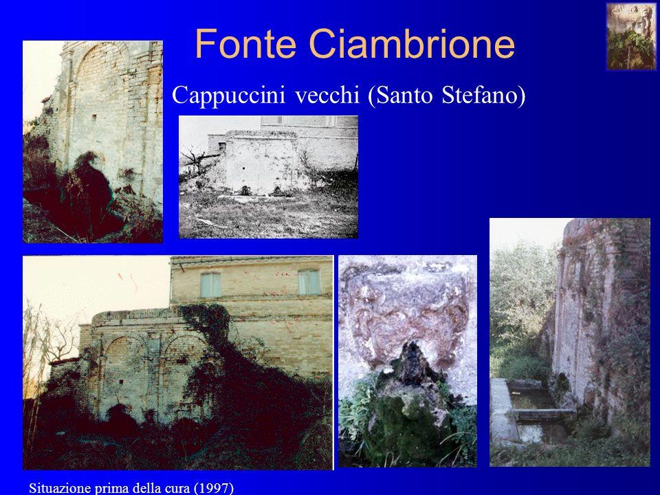 Fonte Ciambrione Cappuccini vecchi (Santo Stefano) Situazione prima della cura (1997)