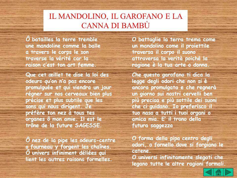 LA MANDOLINE LŒILLET ET LE BAMBOU