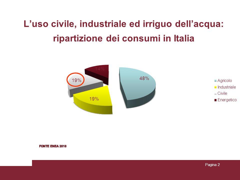 Pagina 2 Luso civile, industriale ed irriguo dellacqua: ripartizione dei consumi in Italia