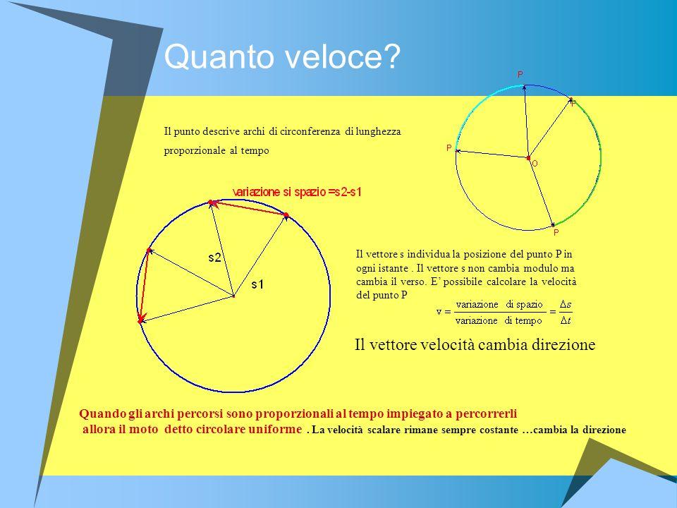 Quanto veloce? Il punto descrive archi di circonferenza di lunghezza proporzionale al tempo Il vettore s individua la posizione del punto P in ogni is