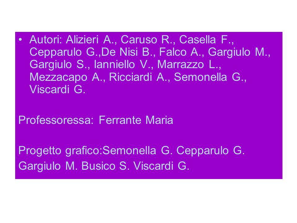 Autori: Alizieri A., Caruso R., Casella F., Cepparulo G.,De Nisi B., Falco A., Gargiulo M., Gargiulo S., Ianniello V., Marrazzo L., Mezzacapo A., Ricciardi A., Semonella G., Viscardi G.
