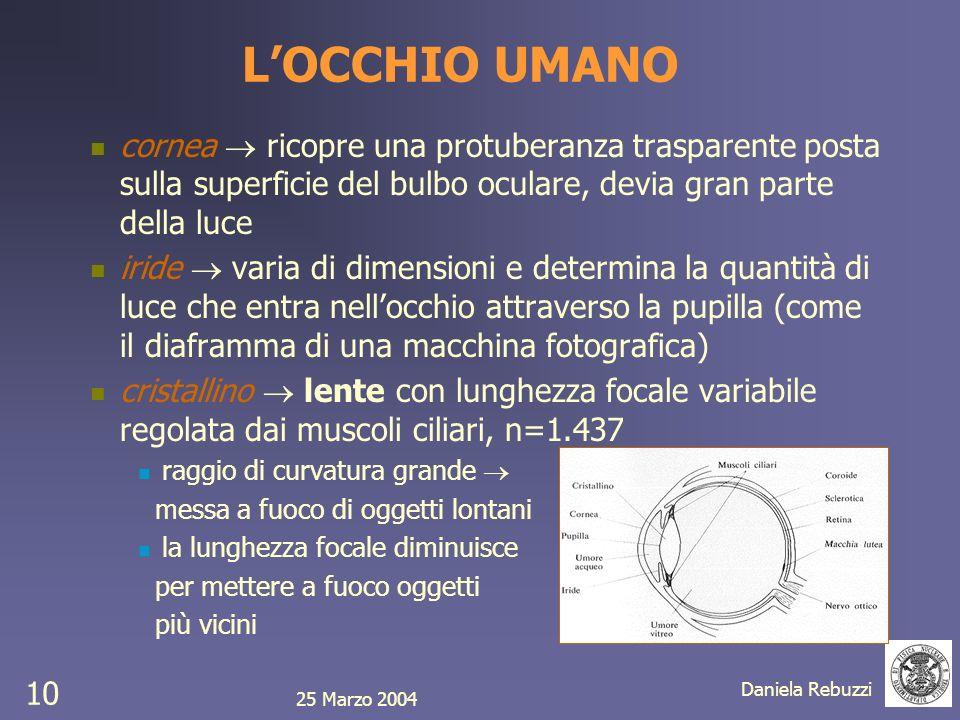 25 Marzo 2004 Daniela Rebuzzi 10 LOCCHIO UMANO cornea ricopre una protuberanza trasparente posta sulla superficie del bulbo oculare, devia gran parte