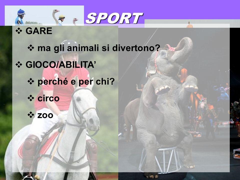 17 gennaio 2013 SPORT GARE ma gli animali si divertono? GIOCO/ABILITA perché e per chi? circo zoo
