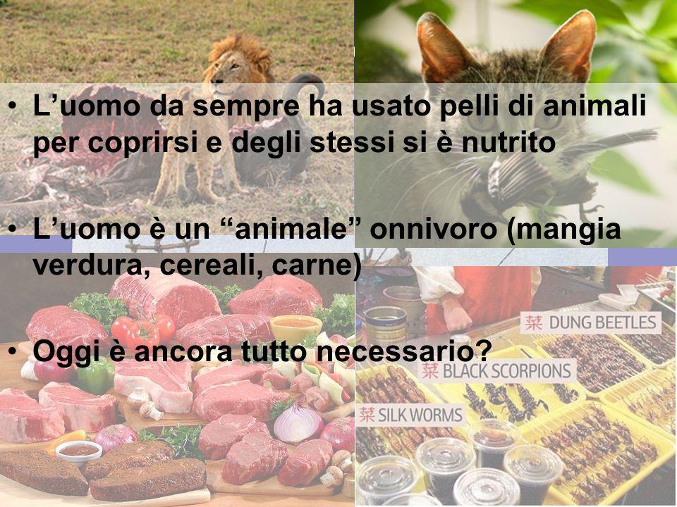 17 gennaio 2013 CIBO & VESTITO Luomo da sempre ha usato pelli di animali per coprirsi e degli stessi si è nutrito Luomo è un animale onnivoro (mangia verdura, cereali, carne) Oggi è ancora tutto necessario?