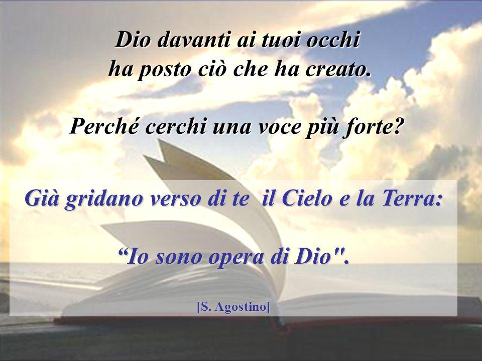 17 gennaio 2013 Già gridano verso di te il Cielo e la Terra: Io sono opera di Dio .
