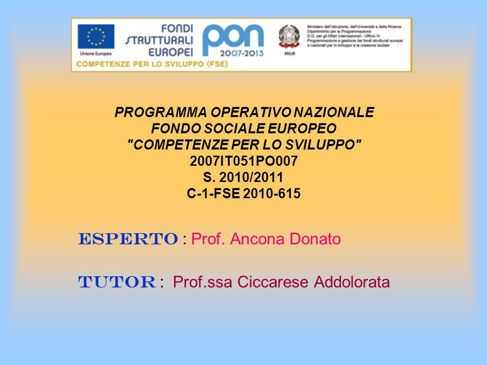 PROGRAMMA OPERATIVO NAZIONALE FONDO SOCIALE EUROPEO COMPETENZE PER LO SVILUPPO 2007IT051PO007 S.