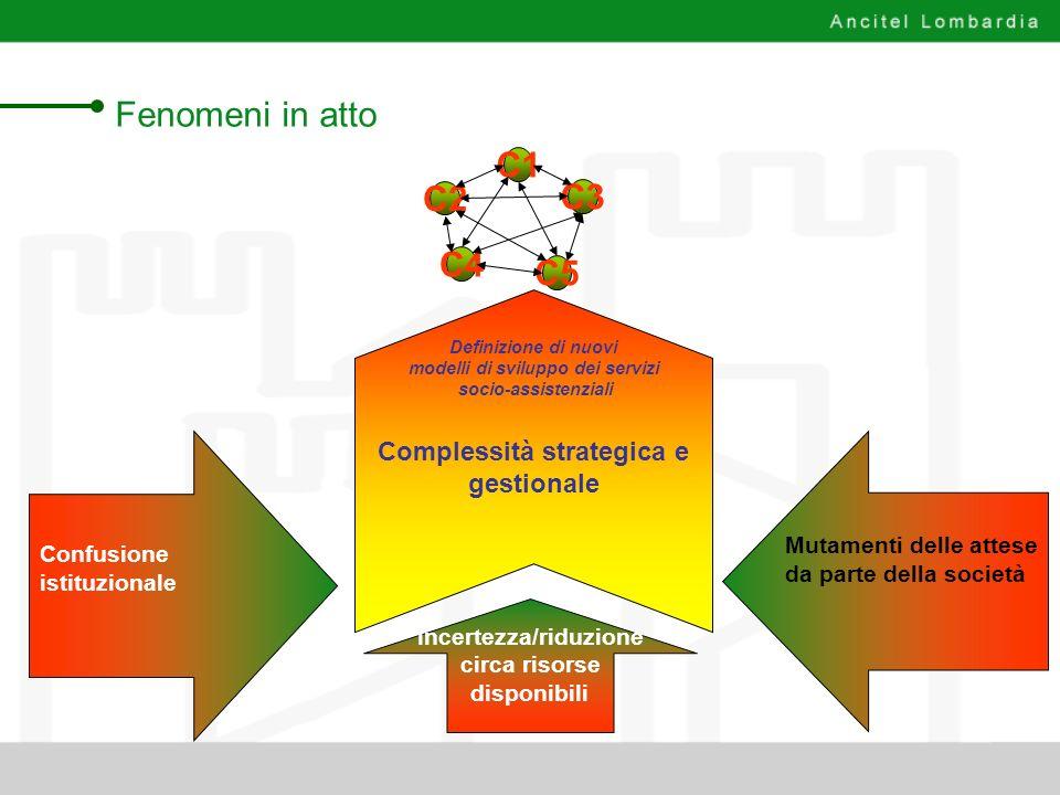Si possono individuare tre tipologie di gestioni associate: Strutturazione dei sistemi di funzionamento integrativa aziendalecoordinativa iac