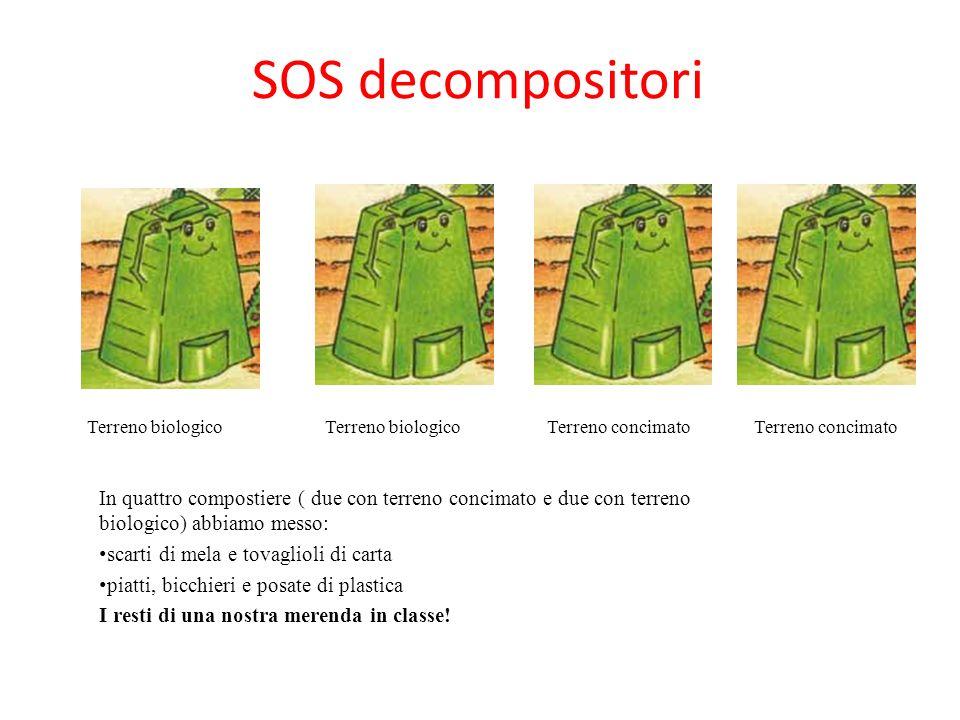 SOS decompositori In quattro compostiere ( due con terreno concimato e due con terreno biologico) abbiamo messo: scarti di mela e tovaglioli di carta