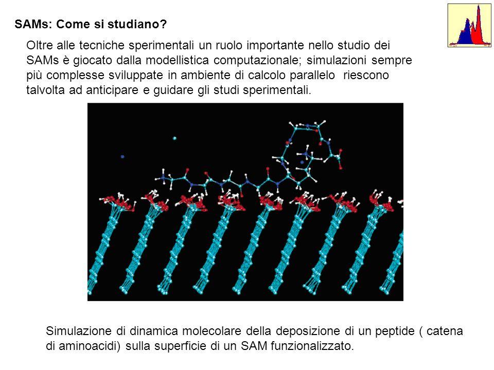 Oltre alle tecniche sperimentali un ruolo importante nello studio dei SAMs è giocato dalla modellistica computazionale; simulazioni sempre più comples