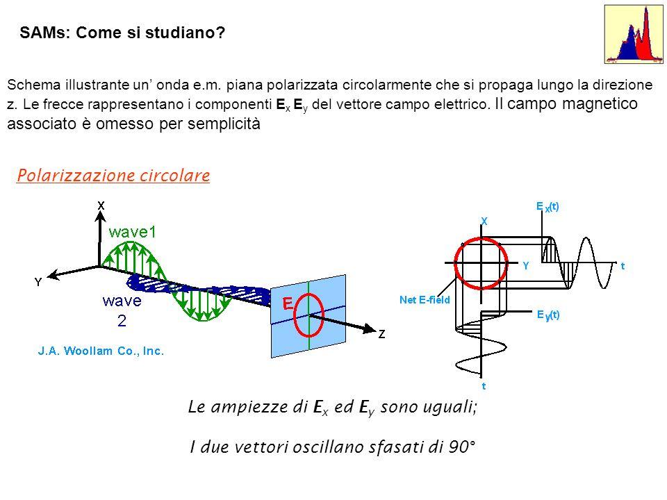 Polarizzazione circolare Le ampiezze di E x ed E y sono uguali; I due vettori oscillano sfasati di 90° Schema illustrante un onda e.m. piana polarizza