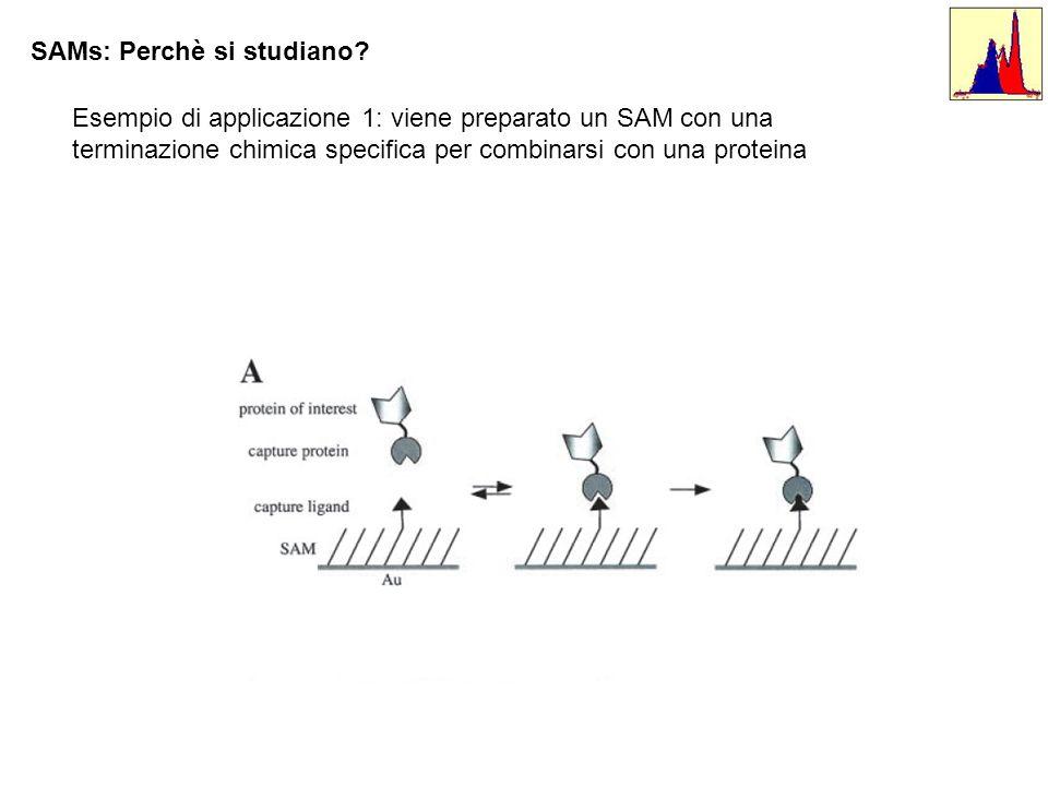 SAMs: Perchè si studiano? Esempio di applicazione 1: viene preparato un SAM con una terminazione chimica specifica per combinarsi con una proteina