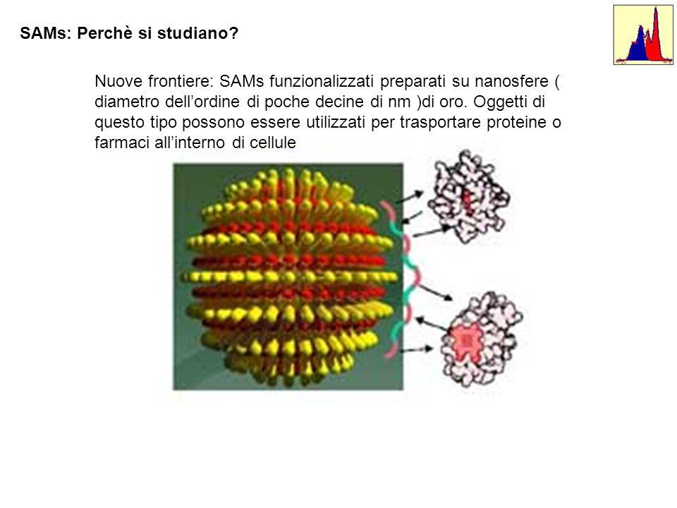 SAMs: Perchè si studiano? Nuove frontiere: SAMs funzionalizzati preparati su nanosfere ( diametro dellordine di poche decine di nm )di oro. Oggetti di