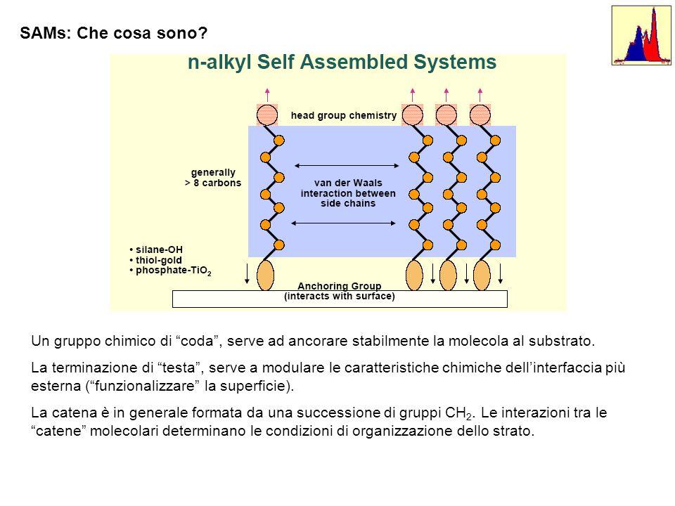 Un gruppo chimico di coda, serve ad ancorare stabilmente la molecola al substrato. La terminazione di testa, serve a modulare le caratteristiche chimi