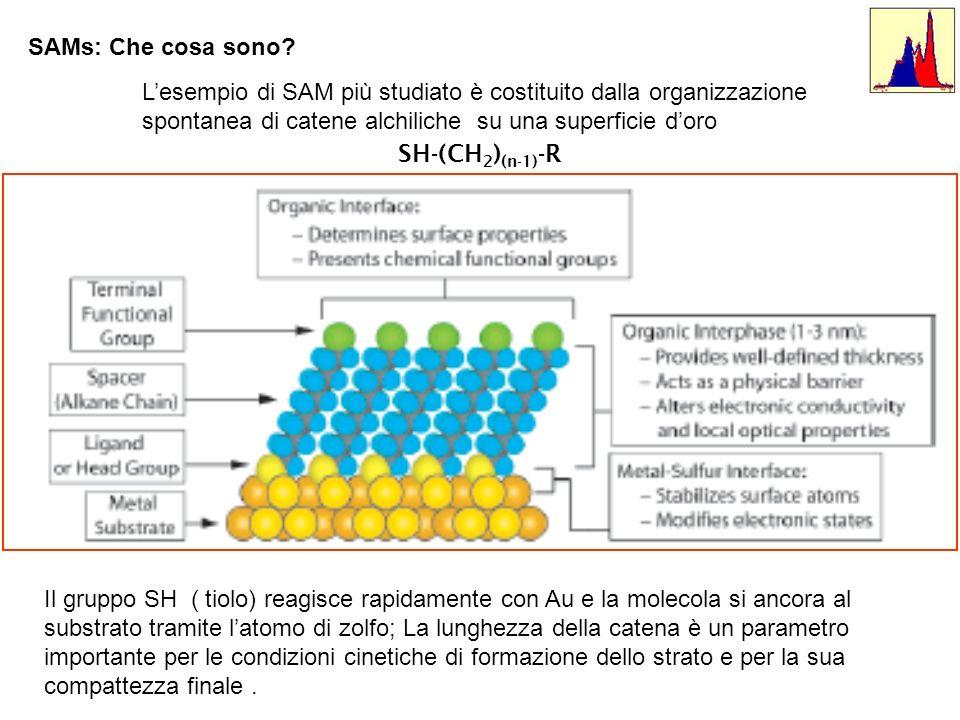 SAMs: Che cosa sono.Immagine STM (a falsi colori) di un monostrato di C10 su Au.