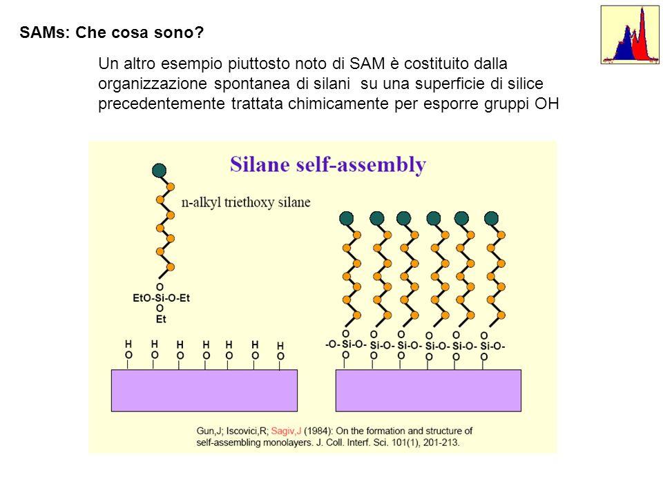 SAMs: Che cosa sono? Un altro esempio piuttosto noto di SAM è costituito dalla organizzazione spontanea di silani su una superficie di silice preceden