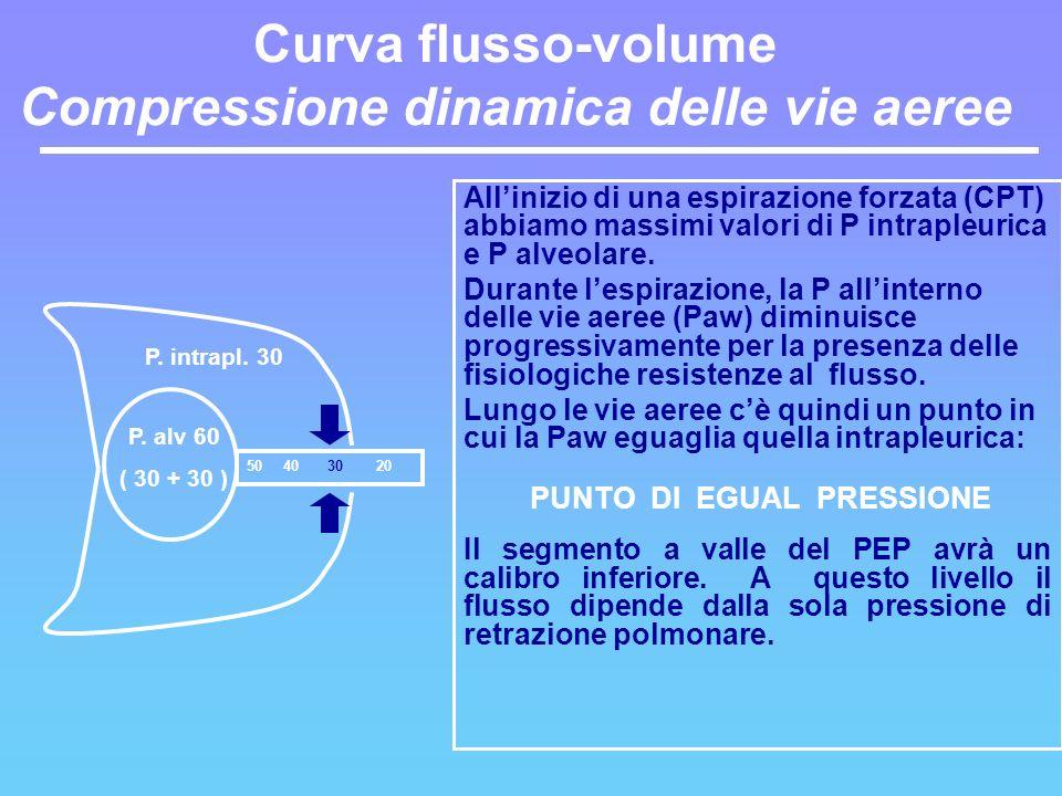 Curva flusso-volume Compressione dinamica delle vie aeree Allinizio di una espirazione forzata (CPT) abbiamo massimi valori di P intrapleurica e P alv