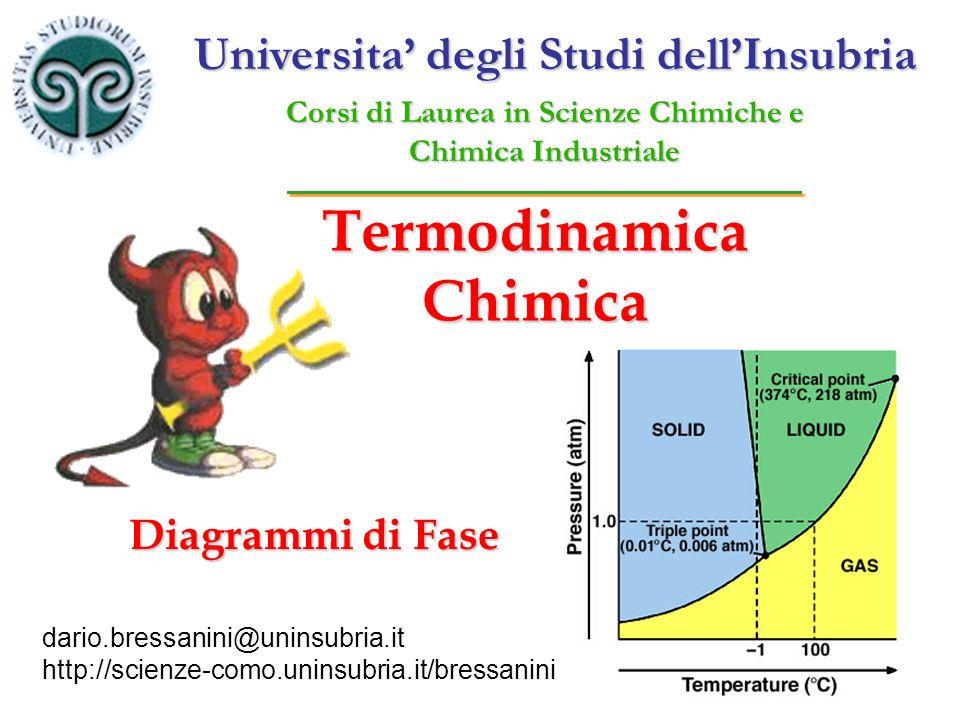 Termodinamica Chimica dario.bressanini@uninsubria.it http://scienze-como.uninsubria.it/bressanini Diagrammi di Fase Universita degli Studi dellInsubri