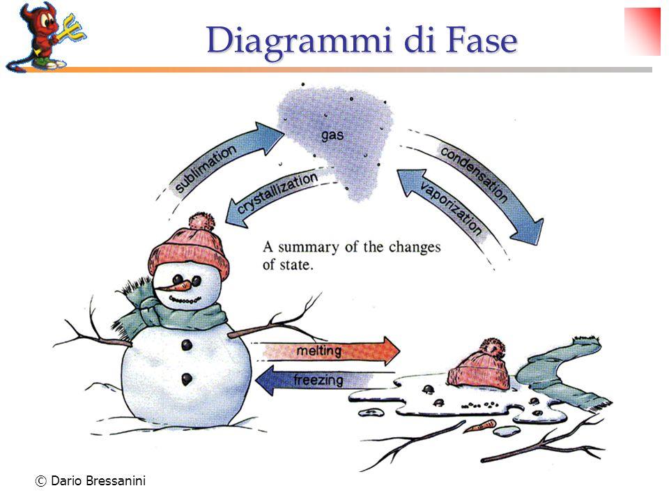 © Dario Bressanini Ghiaccio meno denso dellacqua Ghiaccio secco: più denso della CO 2 liquida Diagrammi di Fase: Caratteristiche Pendenza della linea Solido/Liquido